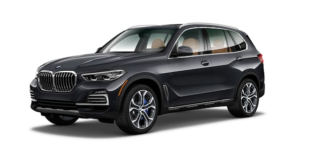 New 2019 BMW X5 xDrive40i SAV Chico