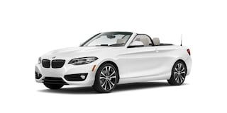 New 2020 BMW 2 Series 230i xDrive Convertible WBA2K1C05L7E04749 Kingsport, TN