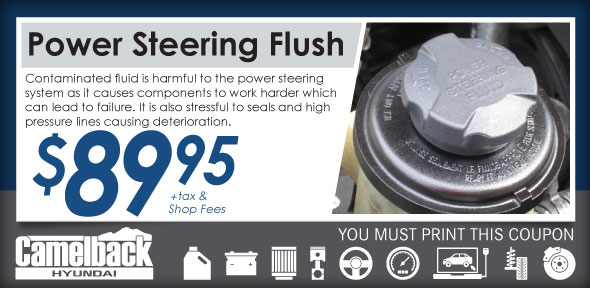 Power Steering Flush Camelback Hyundai