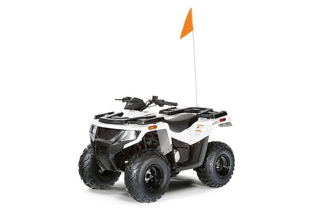 2018 ARCTIC CAT Alterra 90