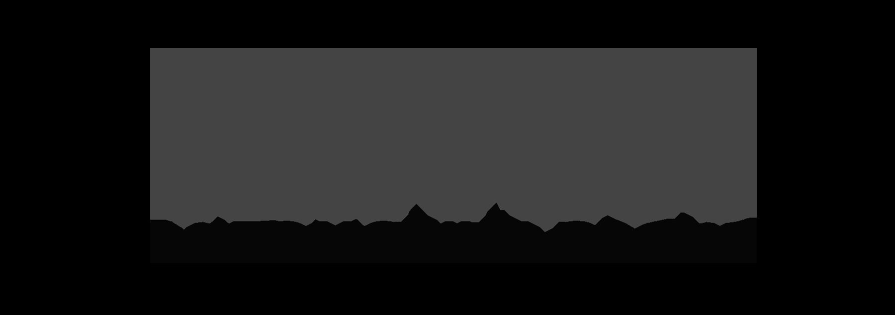 Car Pros Automative Group