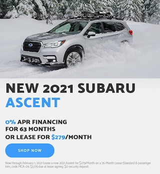 January - 2021 Ascent