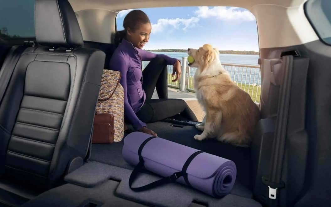 woman sits in rear of 2019 Ford Escape with dog
