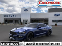 2019 Ford Mustang HB Coupe