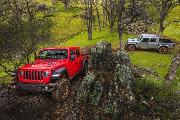 2 2020 Jeep Gladiator's Driving Uphill in a Forest