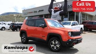 2019 Jeep Renegade Trailhawk SUV ZACNJBC13KPK45825