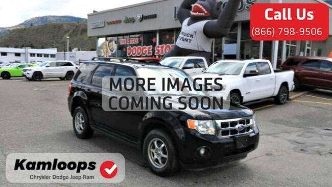 2010 Ford Escape /SAT Radio/ XLT SUV