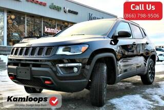 2019 Jeep Compass Trailhawk SUV 3C4NJDDB5KT661289