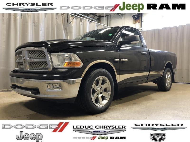 2010 Dodge Ram 1500 Truck Regular Cab