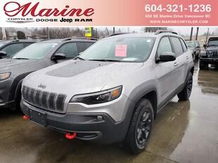 2020 Jeep Cherokee Trailhawk SUV 1C4PJMBX6LD558476