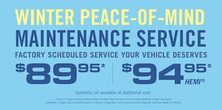 WINTER PEACE-OF-MIND MAINTENCACE SERVICE