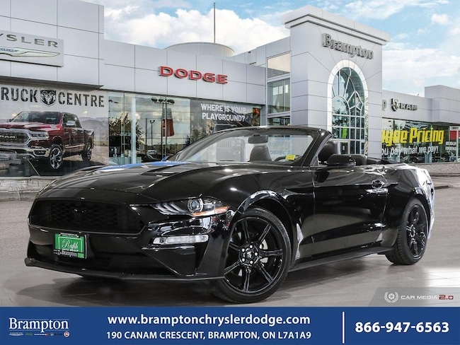 2019 Ford Mustang ECO*PREMIUM*LEATHER*CONVERTIBLE*NAV* Convertible