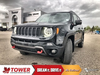 2019 Jeep Renegade Trailhawk Trailhawk 4x4