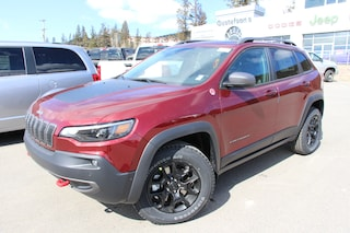 2020 Jeep Cherokee Trailhawk Elite SUV 1C4PJMBX8LD616927