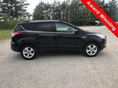 Used 2016 Ford Escape SE SUV 1FMCU9G95GUC24440 for sale in Hoopeston, IL