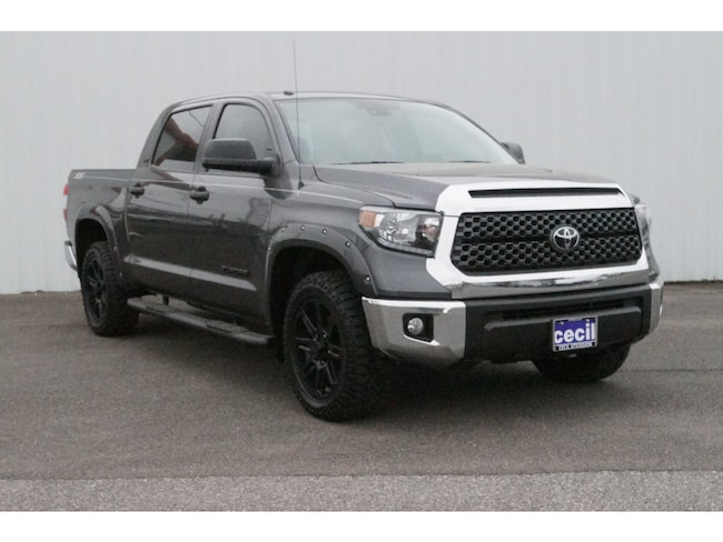 New 2019 Toyota Tundra SR5 4.6L V8 Special Edition Truck CrewMax in Orange, TX