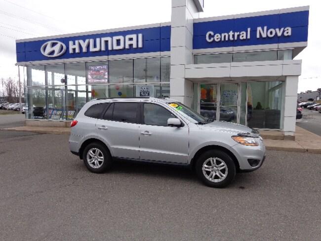 2010 Hyundai Santa Fe GL 2.4 SUV