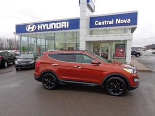 2015 Hyundai Santa Fe Sport 2.0T SE SUV