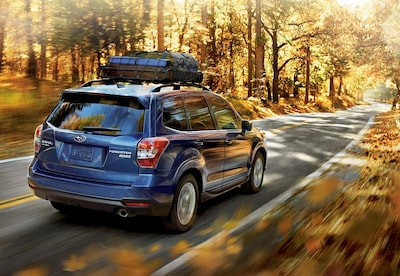 Savings on Our Most Popular Subaru Accessories!