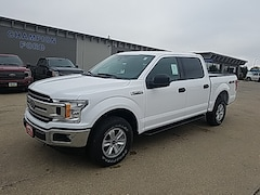 New 2019 Ford F-150 4WD  XLT for Sale in Carroll, IA