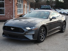 New 2019 Ford Mustang 2.3L Ecoboost 101A Pkg.  310 Hp. 6 Speed Manual  Coupe for sale in Edinboro, PA