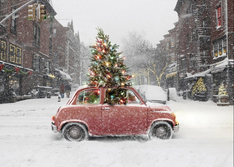 how to tie a Christmas tree to your car