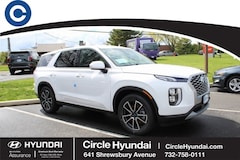 New 2020 Hyundai Palisade SE SUV for Sale in Shrewsbury, NJ