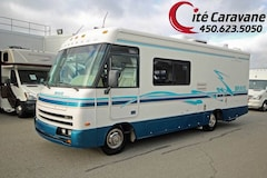 1996 WINNEBAGO Brave Classe A VR/RV 6 PNEUS NEUF !! WOW SKIRT PAINT