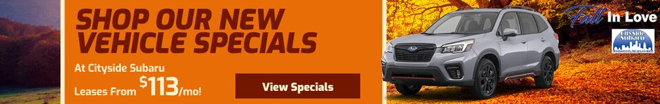 Shop Our Latest Specials