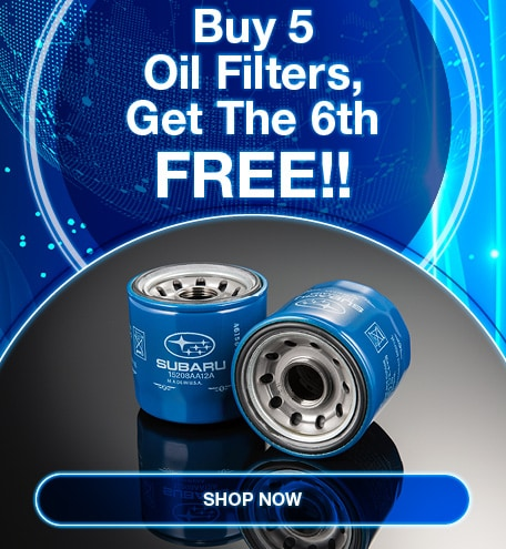 Buy 5 Oil Filters, Get The 6th FREE!!