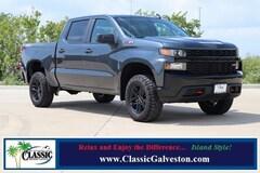 2020 Chevrolet Silverado 1500 Silverado Custom Trail Boss Truck Crew Cab