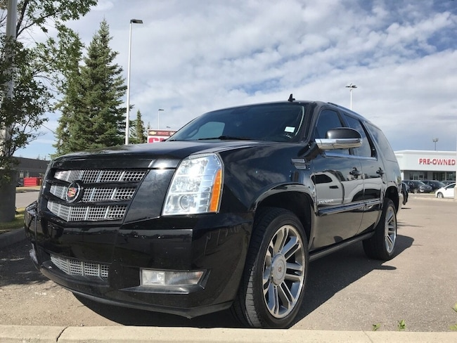 2014 Cadillac Escalade Premium | AWD | Leather | Sunroof | DVD SUV