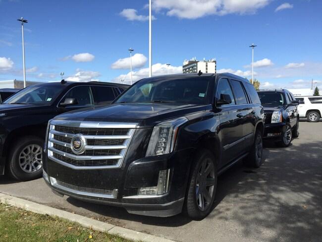 2015 Cadillac Escalade Premium | DVD | Sunroof | Clean Carfax SUV