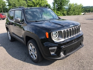New 2020 Jeep Renegade LIMITED 4X4 Sport Utility for sale in Cobleskill, NY
