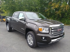 New 2020 GMC Canyon SLT Truck 1GTP6DE16L1101970 For Sale in Cobleskill, NY