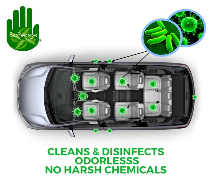 Clean and disinfect your vehicle