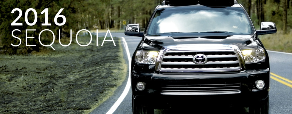 Toyota Model Info and Comparisons