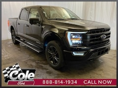 new 2021 Ford F-150 Lariat Truck coldwater