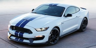 New 2019 Ford Mustang Shelby GT350 Coupe in Danbury, CT