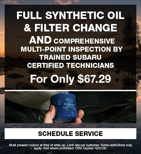 Full Synthetic Oil & Filter change and multi-point inspection