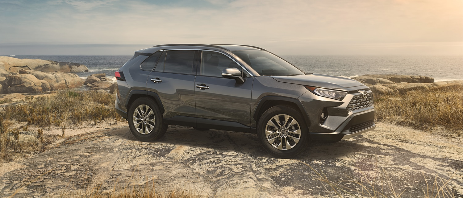 Grey 2019 RAV4 parked in front of a scenic overlook
