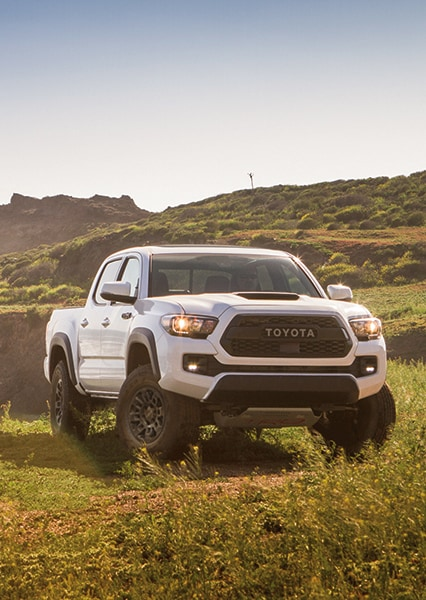 White Tacoma Pro parked in a grassy field