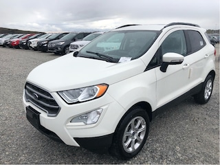 2018 Ford EcoSport SE | IT'S EASY AT COLONY FORD!! SUV