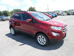 New 2020 Ford EcoSport SE SUV for Sale in Richfield Springs NY