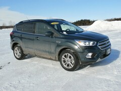 Used 2019 Ford Escape SEL 4X4 for Sale in Richfield Springs, NY