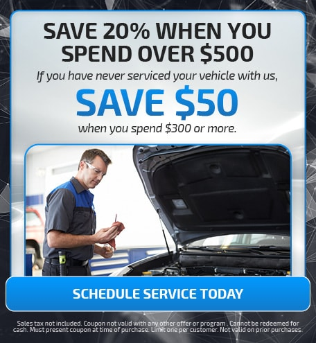 SAVE 20% WHEN YOU SPEND OVER $500