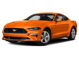 2021 Ford Mustang Car