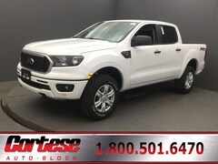 New 2019 Ford Ranger XLT Truck for sale in Rochester at Cortese Ford