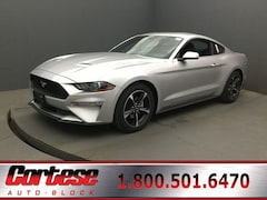 New 2019 Ford Mustang Ecoboost Coupe for sale in Rochester at Cortese Ford