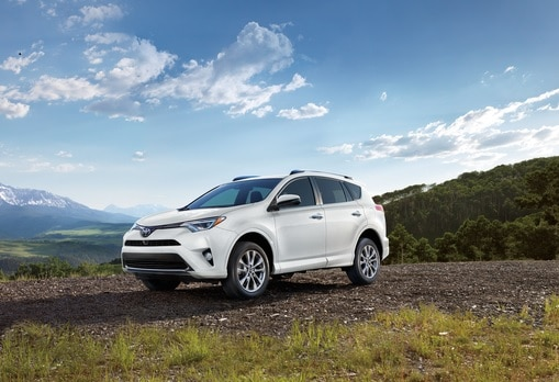 2019 Honda Passport Vs 2019 Toyota Highlander Near Naperville Il